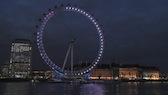 London Eye Wide 8